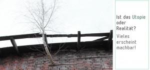 Birkenbewuchs im Mauerwerk oder anders: Natur lässt sich doch nicht unterdrücken!